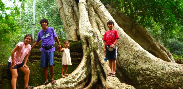 "The temples were ""kid-friendly"" meaning they offered trees and roots to play around."