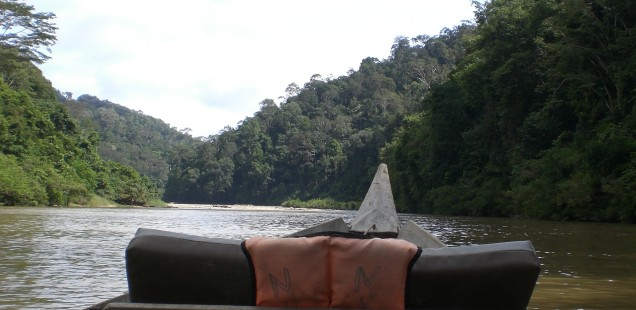 Another boat ride upriver for hiking.