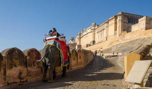 Riding to Amber Fort like a Maharaja