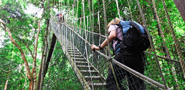 Climbing up to the bridge.