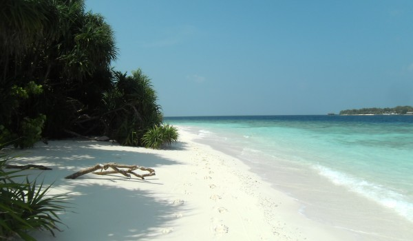 Beach Maldives