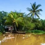 Mekong river, Vietnam