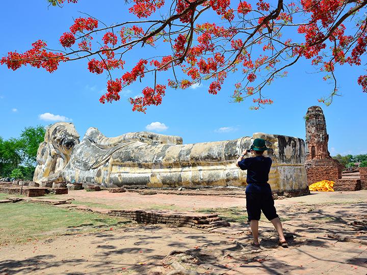 Amazing Ayutthaya.