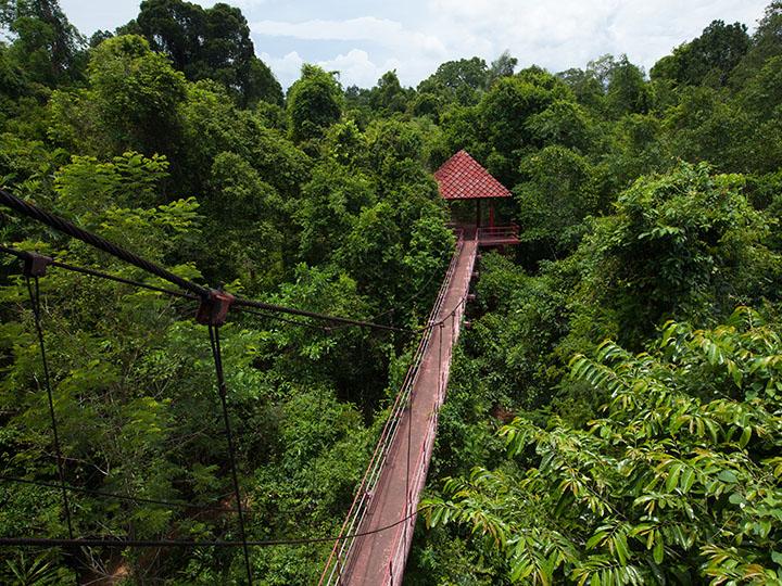 Penang national park malaysia